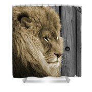 King In Sepia Shower Curtain