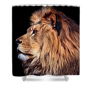 King Of Beast Shower Curtain