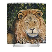 King Of The African Savannah Shower Curtain