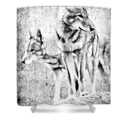 Alpha Male Black And White Shower Curtain
