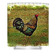 King Of The Hill - Winery Rooster Shower Curtain