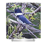 King Of The Tree Shower Curtain