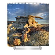 King Of Wings 3 Shower Curtain
