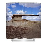 King Of Wings Shower Curtain