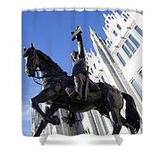 King Robert The Bruce Shower Curtain