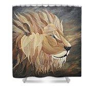 Kingdom Come Shower Curtain