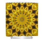 Kingdom Of Kasean Shower Curtain