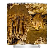 King's Throne Shower Curtain