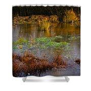 Kintbury Newt Ponds Shower Curtain