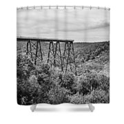 Kinzua Viaduct 6911 Shower Curtain