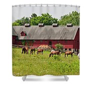 Kirtland Hills Farm 0722 Shower Curtain