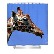 Kiss Me Baby Shower Curtain