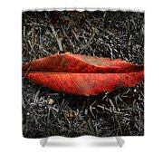 Kiss Of Leaf Shower Curtain