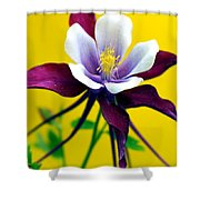 Kiss Of Yellow Shower Curtain