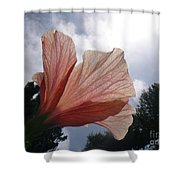 Kissing Clouds Shower Curtain