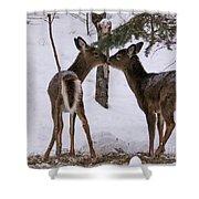 Kissing Deer Shower Curtain