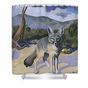 Kit Fox Shower Curtain