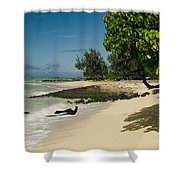 Kite Beach Kanaha Beach Maui Hawaii Shower Curtain