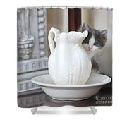 Kitten And The Picther Shower Curtain