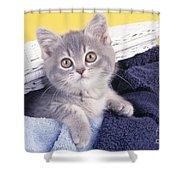 Kitten In Laundry Shower Curtain