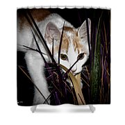 Kitten In The Plant Shower Curtain