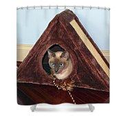 Kitty A-frame Shower Curtain