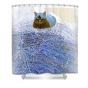 Kitty Blue IIi Shower Curtain