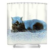 Kitty Blue IIII Shower Curtain
