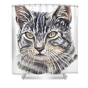 Kitty Kat Iphone Cases Smart Phones Cells And Mobile Cases Carole Spandau Cbs Art 337 Shower Curtain