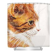 Kitty Kat Iphone Cases Smart Phones Cells And Mobile Cases Carole Spandau Cbs Art 338 Shower Curtain