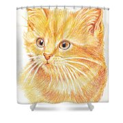 Kitty Kat Iphone Cases Smart Phones Cells And Mobile Cases Carole Spandau Cbs Art 339 Shower Curtain