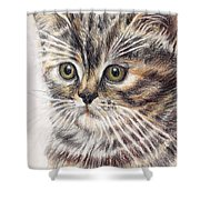 Kitty Kat Iphone Cases Smart Phones Cells And Mobile Cases Carole Spandau Cbs Art 343 Shower Curtain