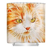 Kitty Kat Iphone Cases Smart Phones Cells And Mobile Cases Carole Spandau Cbs Art 344 Shower Curtain