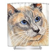 Kitty Kat Iphone Cases Smart Phones Cells And Mobile Cases Carole Spandau Cbs Art 346 Shower Curtain