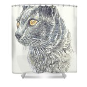 Kitty Kat Iphone Cases Smart Phones Cells And Mobile Cases Carole Spandau Cbs Art 347 Shower Curtain
