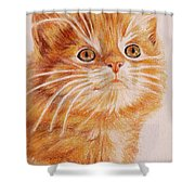 Kitty Kat Iphone Cases Smart Phones Cells And Mobile Cases Carole Spandau Cbs Art 349 Shower Curtain
