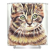 Kitty Kat Iphone Cases Smart Phones Cells And Mobile Cases Carole Spandau Cbs Art 350 Shower Curtain