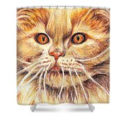 Kitty Kat Iphone Cases Smart Phones Cells And Mobile Cases Carole Spandau Cbs Art 351 Shower Curtain