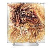 Kitty Kat Iphone Cases Smart Phones Cells And Mobile Cases Carole Spandau Cbs Art 352 Shower Curtain