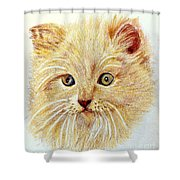 Kitty Kat Iphone Cases Smart Phones Cells And Mobile Phone Cases Carole Spandau 301 Shower Curtain