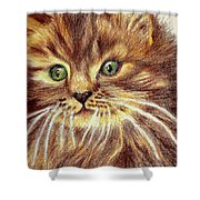 Kitty Kat Iphone Cases Smart Phones Cells And Mobile Phone Cases Carole Spandau 317 Shower Curtain