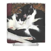 Kitty Love Shower Curtain