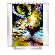 Kitty Nosed Shower Curtain