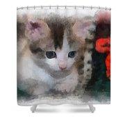 Kitty Photo Art 01 Shower Curtain
