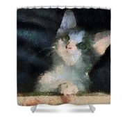 Kitty Photo Art 05 Shower Curtain