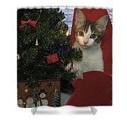 Kitty Says Happy Holidays Shower Curtain