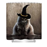 Kitty Witch Shower Curtain
