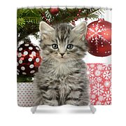 Kitty Xmas Present Shower Curtain