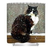 Kittycat In The Snow On The Fence Shower Curtain