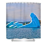 Kneeling Before The Queen Iceberg In Saint Anthony-newfoundland  Shower Curtain